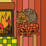 Cat in front of the fireplace Royalty Free Stock Photos