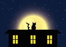 The cat and full moon Stock Images