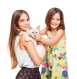 Cat fun. Royalty Free Stock Photo