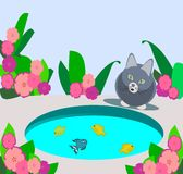 Cat in the Garden. At cat sitting in a garden, with many flowers, looking at a goldfish pond Royalty Free Stock Photos