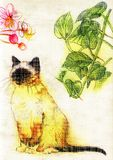 Cat at the Garden Colored Pencil Illustration. For any purpose such as cover book and illustration, wallpaper, home decor, typography background, print on Vector Illustration