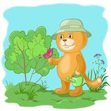 Cat gardener with a butterfly. Cartoon, cat gardener with a butterfly in the garden. Eps10, contains transparencies Stock Image