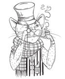 Cat gentleman in bowler hat, scarf with pipe and monocle. Anthropomorphic character. Stock Photography