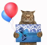 Cat with a gift box and balloons
