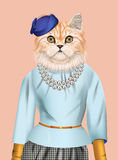 Cat girl dressed up in elegant outfit. Royalty Free Stock Photography