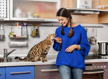 Cat and girl in the kitchen. A smiling girl with pigtails in the kitchen with a cat Royalty Free Stock Photography