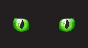 Cat glossy eyes on black background Royalty Free Stock Images