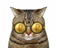 Cat in gold ruble glasses stock images