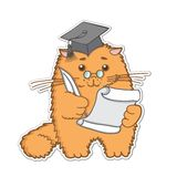 Cat is a graduate Stock Photography