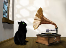 Cat with gramophone. Illustration of a black cat looking into an old gramophone horn Stock Photography
