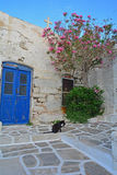 Cat and Greek House Royalty Free Stock Photos