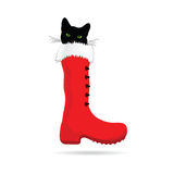 Cat with green eye vector. Cat with green eye and new year boot vector Stock Photos