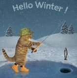 Cat on ice fishing 2. The cat in a green hat and boots is in ice fishing on a frozen lake in the forest. Hello winter stock images