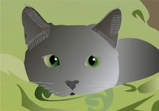 Cat grey. The gray cat lies on a green blanket vector illustration