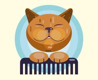 Cat  grooming. Haircut, combing and grooming pets. Icon, logo for the salon. A contented cat holds a comb. Flat Vector Illustration stock illustration