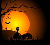 Cat and halloween. Halloween night with the black silhouettes of cats, pumpkins, bats Stock Photos