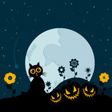 Cat on Halloween Stock Images
