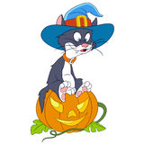 Cat on halloween Stock Photography