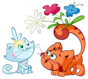 Cat handing flowers to another cat Stock Images