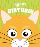 Cat Happy birthday card. Cat cartoon on happy birthday card vector illustration graphic design Stock Images