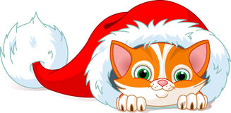 Cat Hat. Cute red kitten in Santa�s Hat. Vector illustration Royalty Free Stock Images