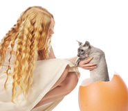 Cat Hatched From Egg Royalty Free Stock Photo