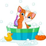 Cat having a bath. Very cute cat having a soapy bath stock illustration