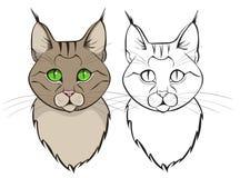 Cat Head Royalty-vrije Stock Afbeelding