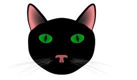 Cat Head Royaltyfri Foto