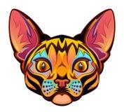 Cat Head Stock Afbeeldingen