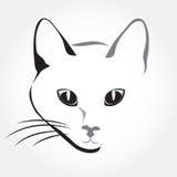 Cat head Stock Photo