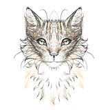 Cat head, glasses,. Set icon Royalty Free Stock Images