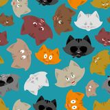 Cat head pattern. Pet background. Ornament face Kitty. Vector il. Lustration Stock Photos