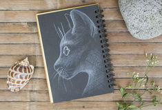 Cat head portrait hand-drawn illustration. Cat by white chalk on black paper. Black paper notepad on wooden background. Vintage wooden table with artwork. Cute Royalty Free Stock Images