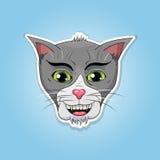 Cat head sticker Stock Photography