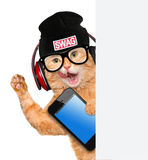 Cat in headphones. Stock Photo