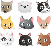 Cat heads. Cartoon cat faces set  cartoon Royalty Free Stock Image