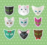 Cat heads  set Stock Images