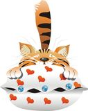 Cat and Heart Pillow. An in love cat lies on a cushion with heart and buttons Royalty Free Stock Image