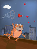 Cat and hearts Royalty Free Stock Photography