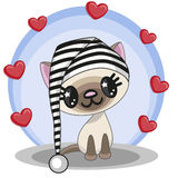 Cat with hearts Stock Image