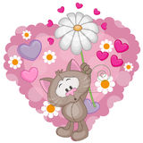 Cat with hearts and flower Stock Photography