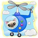 Cat in helicopter Stock Photos