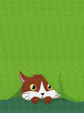CAT HIDDEN BELOW A GREEN FABRIC. With seam royalty free illustration