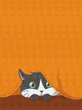 CAT HIDDEN BELOW AN ORANGE FABRIC Stock Photo