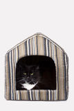 Cat in his house Royalty Free Stock Images