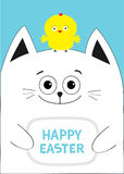 Cat holding Happy Easter text Chicken bird on the head. Greeting card. Baby chick bird friends. Cute cartoon funny character. Blue Stock Photos