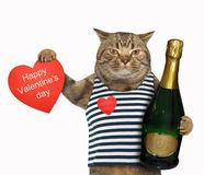 Cat with wine and heart Stock Images