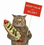 Cat with a funny sign and a hot dog 2. The cat holds a funny sign ` keep calm and no diet ` and a big hot dog. White background stock photography