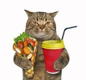 Cat with waffles and latte royalty free stock images
